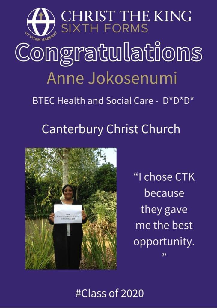 Anne Jokosenumi 1 724x1024